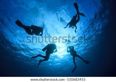 Scuba diving #510683455