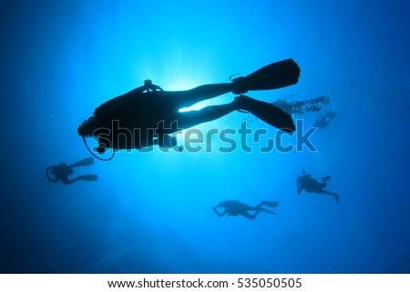 Scuba diving #535050505