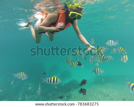 scuba diving at Raya Island in thailand with a school of colorful fish