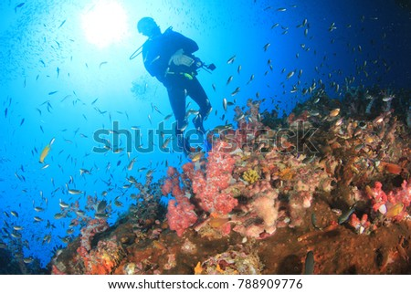 Stock Photo Scuba diving coral reef underwater