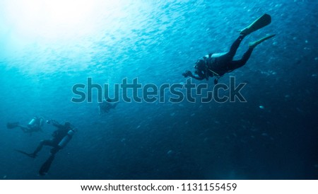 scuba diving - divers and fishes - explore marine underwater world #1131155459