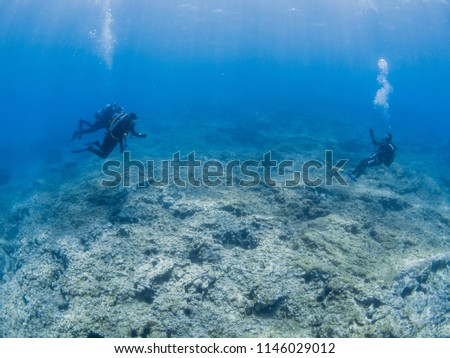 Scuba-Diving excursion in the clear waters of the Atlantic ocean #1146029012