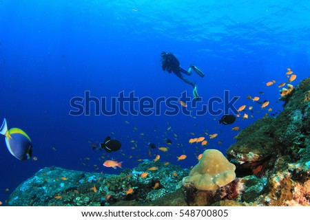 Shutterstock Scuba diving, fish and coral reef underwater