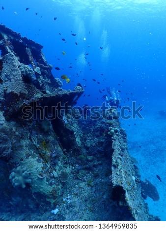 Scuba Diving in Rabaul in 2019 , PNG Islands best scuba diving #1364959835