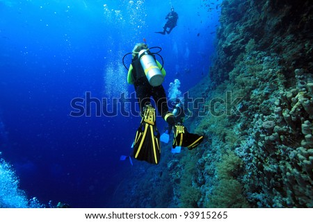 Scuba diving in the ocean