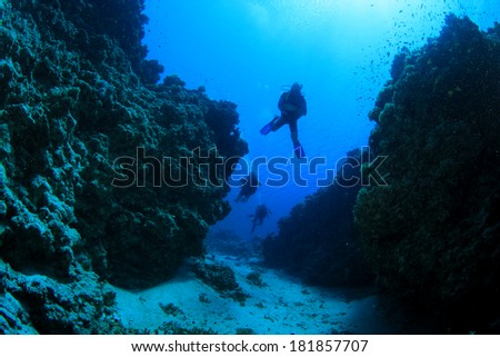 Scuba Diving in underwater canyon #181857707