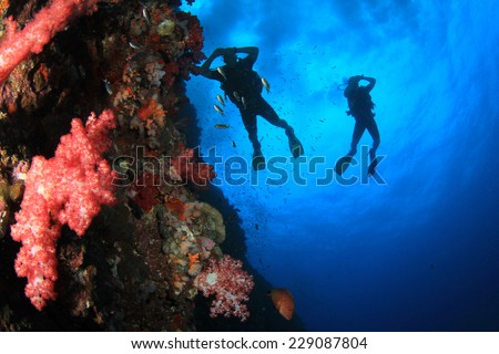 Scuba Diving on coral reef #229087804