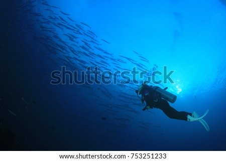 Scuba diving on coral reef underwater #753251233