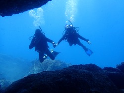 scuba diving under water, diver in blue water, beautiful marine