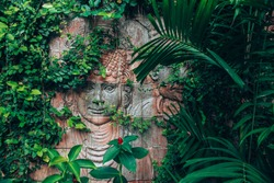 Sculpture carved from stone. Mayan symbol - Big stone head statue in a jungle