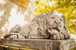 sculpture of sleeping lion in Lviv