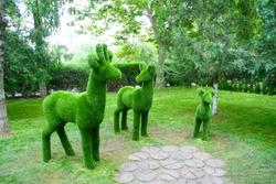 Sculptures of three deer in full face in the Park green on the background of trees.