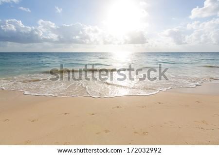 sea #172032992