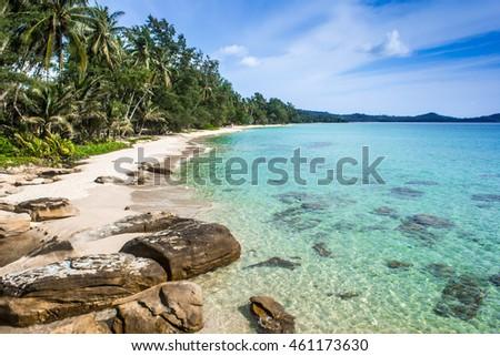 sea and beach #461173630