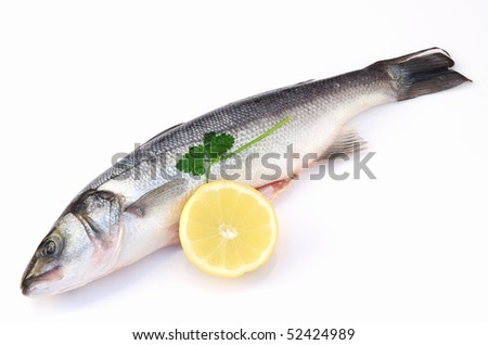 sea bass - stock photo