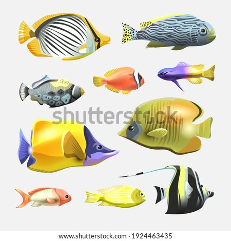Sea beautiful fish collection isolated on white background. Flat design fish.  Fish collection. Aquarium modern flat fishes. Set of aquarium fishes.