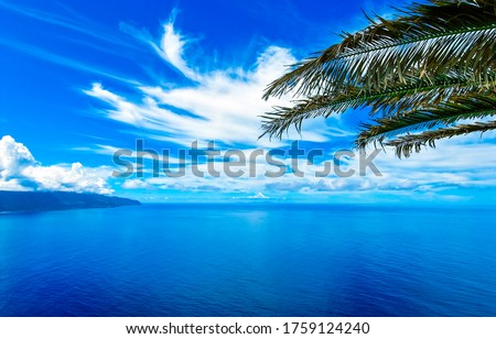 Sea blue sky clouds palm tree branch. Blue sky white clouds sea horizon. Tropical sea blue sky white clouds landscape. Blue sky clouds sea horizon