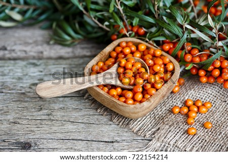 sea-buckthorn, sea buckthorn oil #722154214