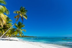 Sea Caribbean landscape in Dominican republic with palm trees, sandy beach, green mountains, rocks, blue sky and turquoise water
