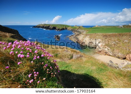 sea-coast of Ireland