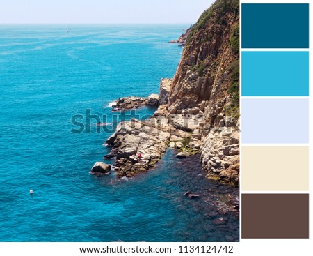Sea color palette. Color theory.  #1134124742