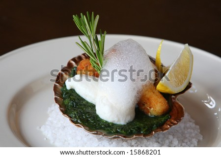 Sea comb under foam from lime, molecular kitchen