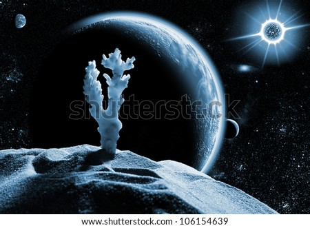 Sea coral on dead planet in space