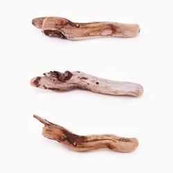 Sea driftwood - set on white background