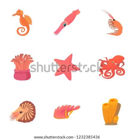 Sea dweller icons set. Cartoon set of 9 sea dweller icons for web isolated on white background