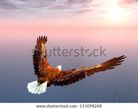 Sea Eagle Computer generated 3D illustration
