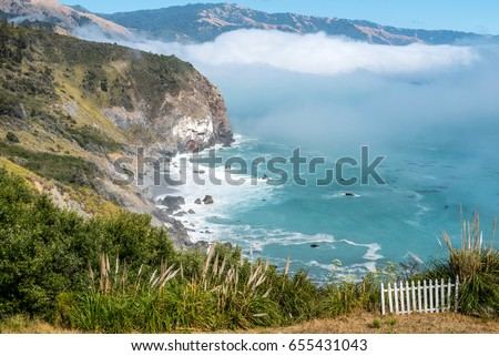 Sea elephants at San Luis Obispo, california, panoramic view Foto stock ©