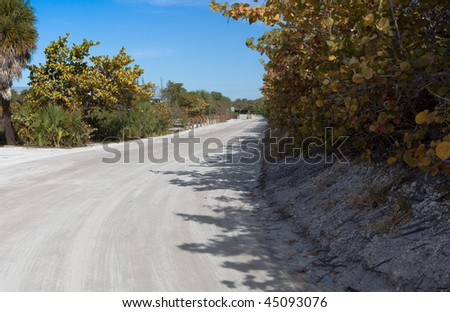 Sea Grapes line typical white sandy road in rural Florida