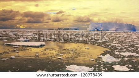 Sea Ice in the Antarctic shore