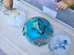 Sea Life Ice Globes for Exploration Activity. Fun summer activity for daycare, school, home school. Educational STEM activity. Water balloons are filled with water dyed with toys and frozen.