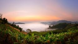 Sea of mist on  mountain in thailand