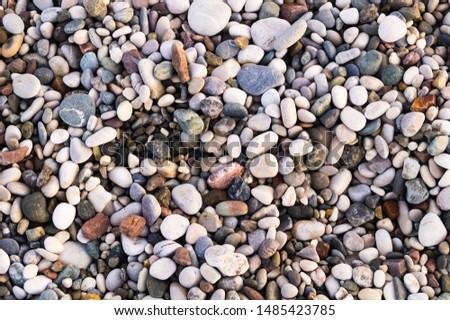Sea pebbles. Background of pebbles.Multicolored pebbles. Sea shore.