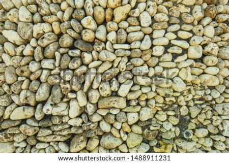 Sea pebbles. Background of pebbles. Sea shore.
