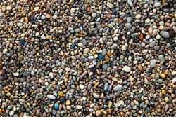 Sea pebbles. Background of pebbles. Wet stones. Multicolored pebbles. Sea shore.