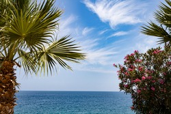 sea photo with blue sky, sea landscape photo, seascape with palm tree