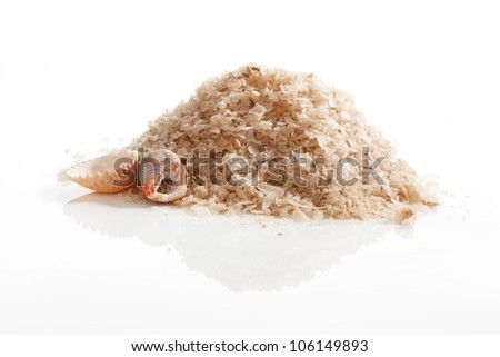 Sea salt crystals with seashells isolated on white background. Luxurious spa treatment concept.