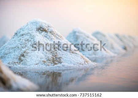 sea salt evaporation pond in...