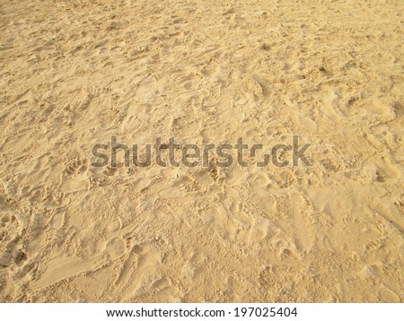 sea sand with footprints