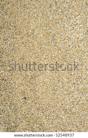 Sea sand with remnants of shells and small pebbles. Background