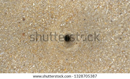 Sea Sand with Sea Water