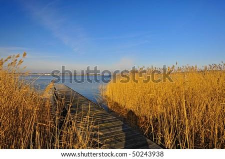 sea scape Usedom