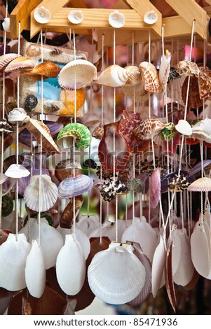 sea shell art and decoration