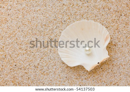 Sea shell with great white pearl on sand background