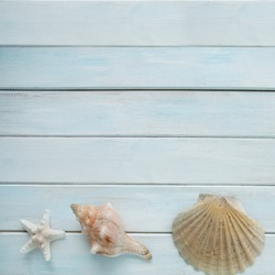 sea shells, anchor, blue cord, white fishing net, starfish, pebbles on a white wooden background with place for text, concept of summer vacation, trip to warm lands, travel