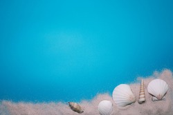 Sea shells and beach sand on the blue background, with free space for text.