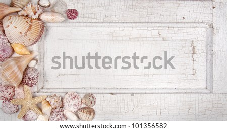 Sea shells arranged on a vintage door, announcement, card or invitation